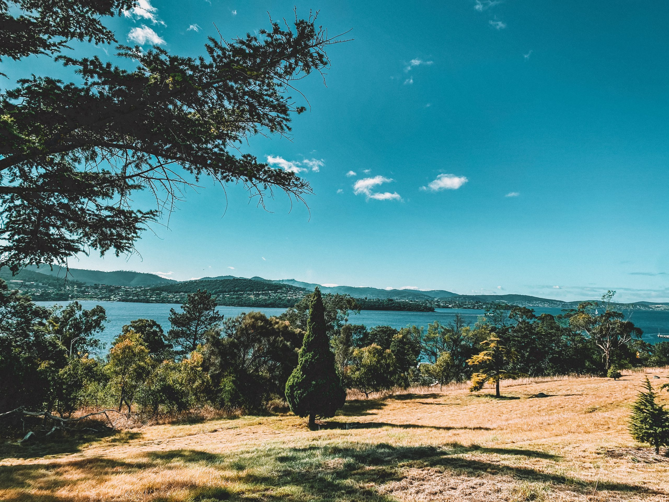 Royal Tasmanian Botanic Gardens in Hobart.