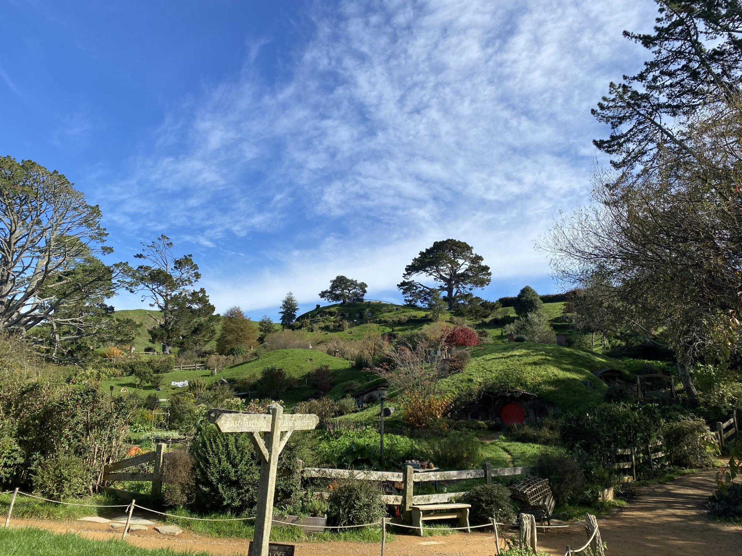 Hobbiton Village in the Sunshine